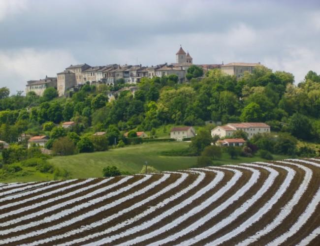 Chemin-compostelle-Lauzerte-vue-village-champs-etape