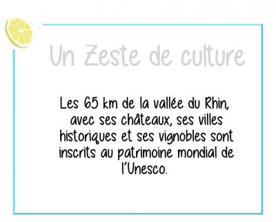 Zeste-culture-vallée-rhin-tourdumondeux