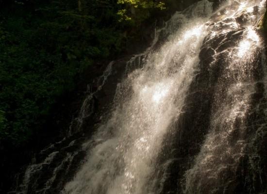 cascade-cantal-forêt