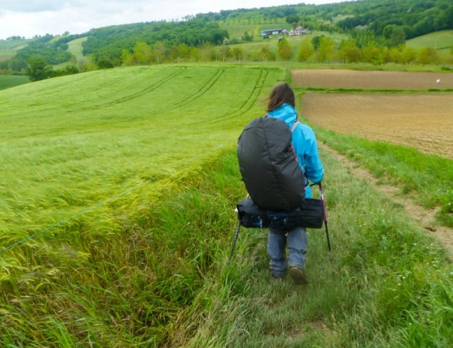 chemin-compostelle-backpacker-femme-champs-blé