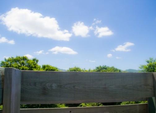 observatoire-ciel-bois