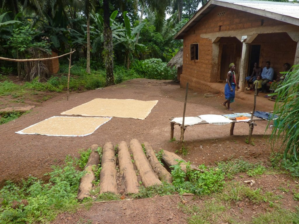 village-afrique-riz-maison