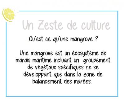 zeste-culture-mangrove