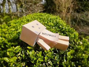Bonhomme-carton-tourdumondeux