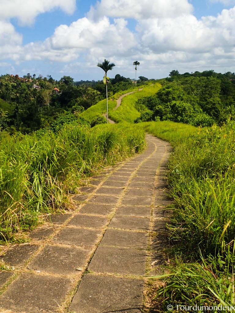 ubud-camphuan-walk-ridge-bali