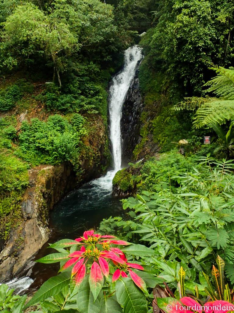 cascade-proche-gitigit-végétation