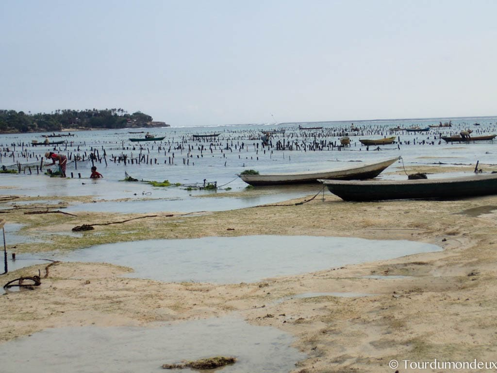 nusa-lembongan-barques-marée