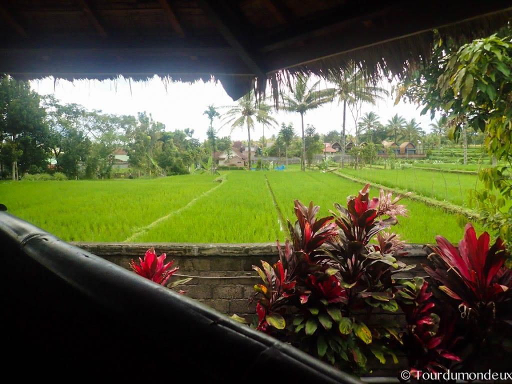 vue-rizieres-tetebatu-lombok