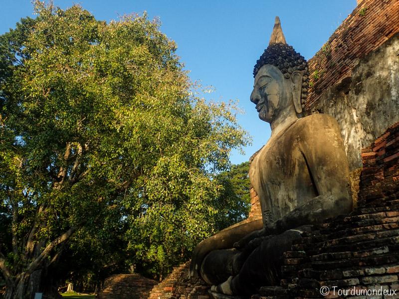 sukhothai-buddha-arbre-assis