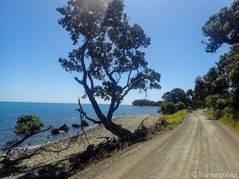coromandel-gravel-road-nouvelle-zelande