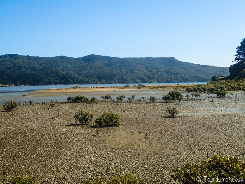 coromandel-paysage-femme-nouvelle-zelande