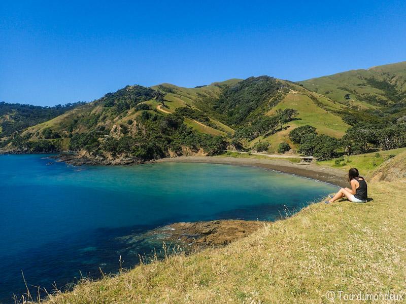 coromandel-paysage-nouvelle-zelande