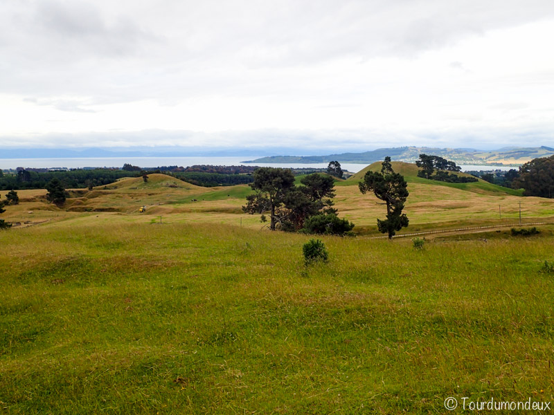 mont-tauhara-nouvelle-zelande