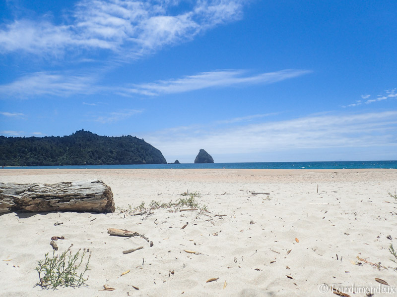 new-chum-plage-nouvelle-zelande