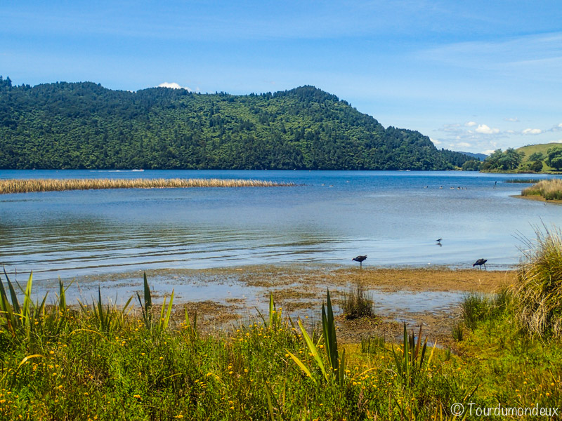 okooreka-lake-nouvelle-zelande