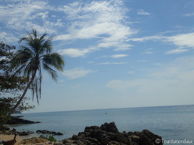 old-lanta-palmier-thaïlande