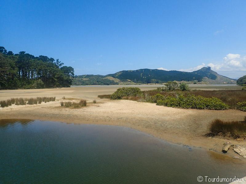 opoutere-paysage-nouvelle-zelande