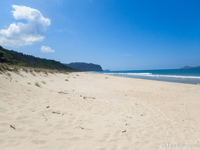 opoutere-plage-nouvelle-zelande