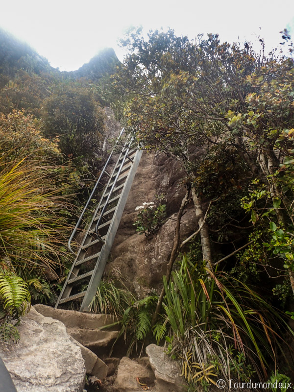 pinnacles-echelle-nouvelle-zelande