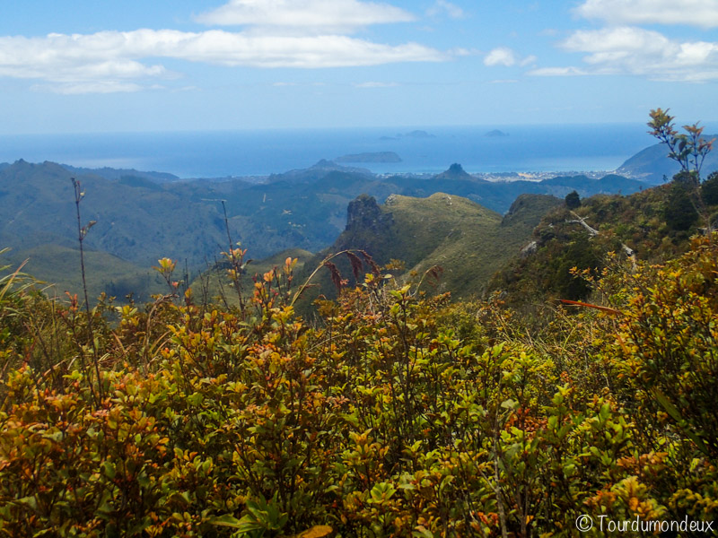 pinacles-paysage-nouvelle-zelande