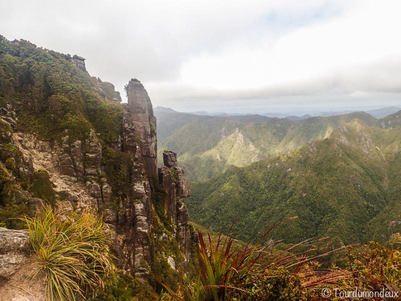 pinnacles-rochers-nouvelle-zelande