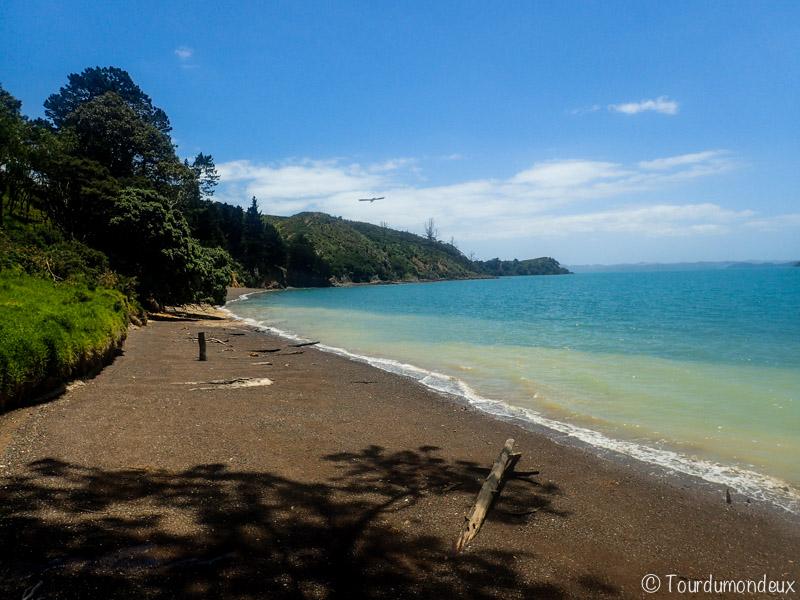 waitawa-plage-nouvelle-zelande