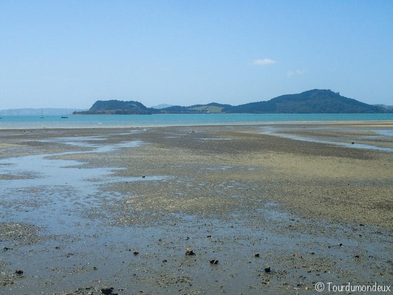 waitawa-rivage-nouvelle-zelande