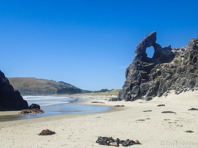 Aramoana-rochers-nouvelle-zelande