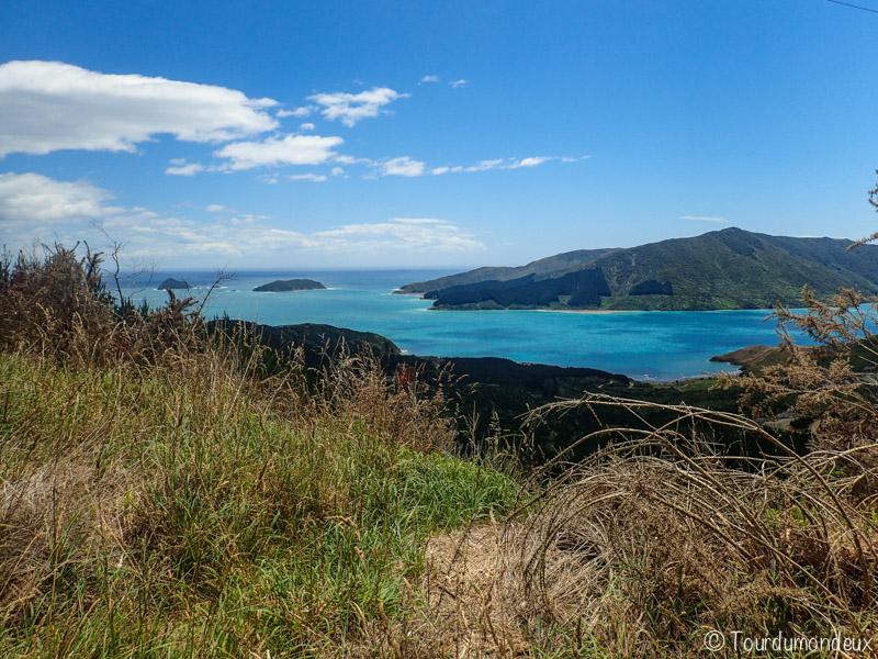 Elaine-Bat-Nouvelle-zelande