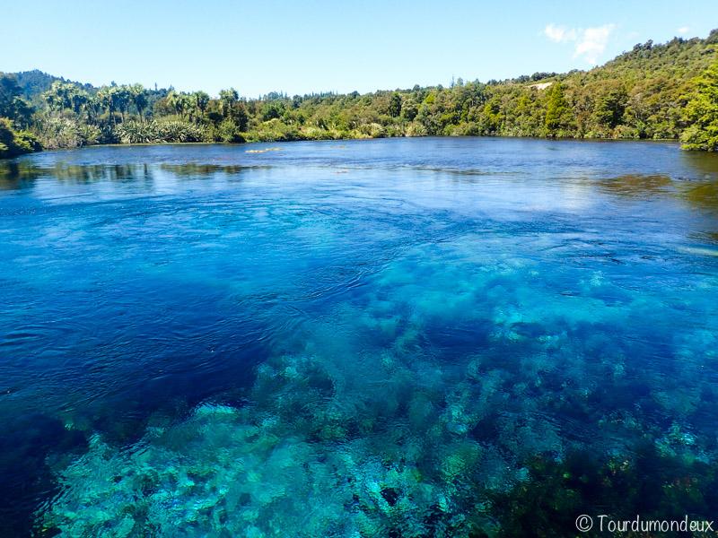 Waikoropupu-springs-nouvelle-zelande