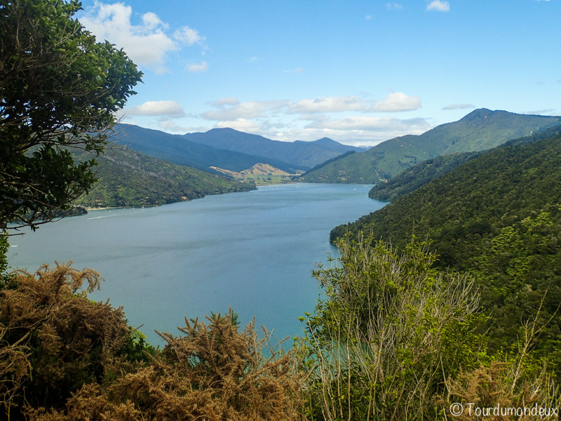charlotte-rack-nouvelle-zelande