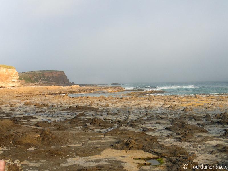 curio-bay-rochers-nouvelle-zelande