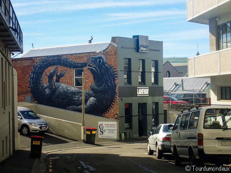 dunedin-street-art-cameleon-nouvelle-zelande