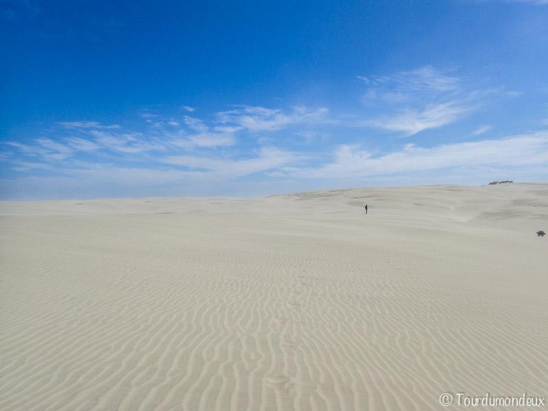 farewell-spit-sable-nouvelle-zelande