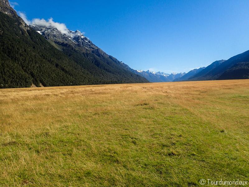 fjords-champs-nouvelle-zelande
