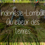 Indonésie – Lombok – Au coeur des terres