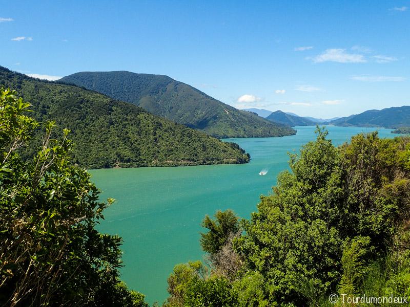malborough-mer-colline-nouvelle-zelande