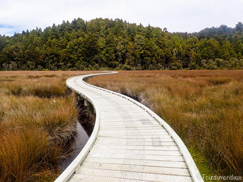 okarito-chemin-nouvelle-zelande