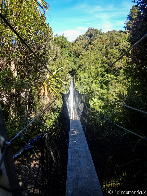 pont-suspension-taranaki