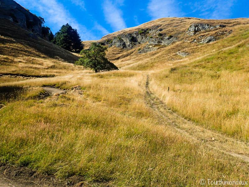 te-mata-peak-chemin-nouvelle-zelande
