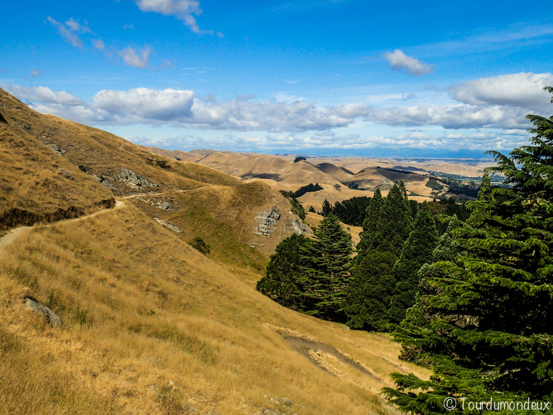 te-mata-peak-versant-nouvelle-zelande