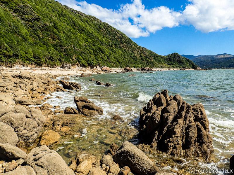 wainui-bay-plage-nouvelle-zelande