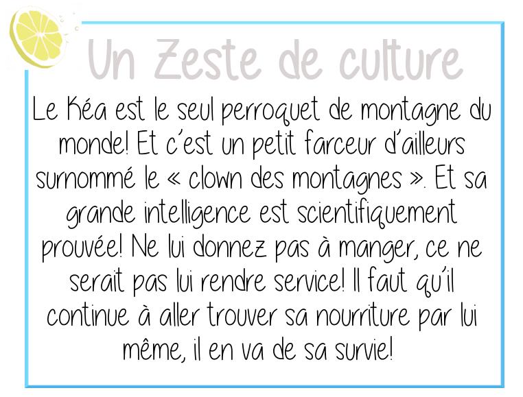 zeste-culture-kea-nouvelle-zelande