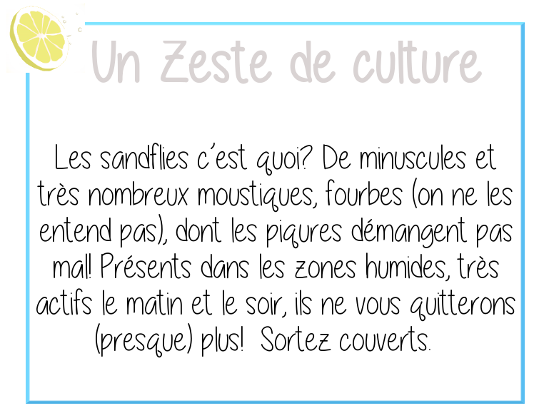 zeste-culture-sandflies-nouvelle-zelande