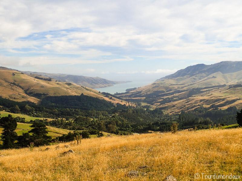 akaroa-campagne-nouvelle-zelande