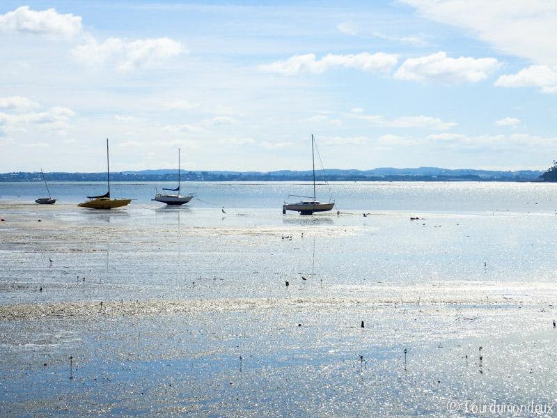 auckland-bateaux-nouvelle-zelande