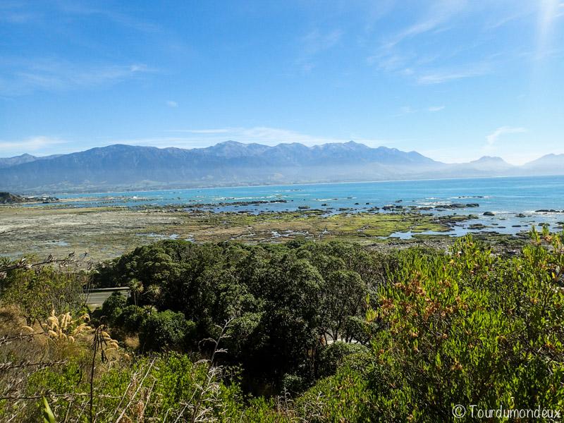 kaikoura-mer-nouvelle-zelande