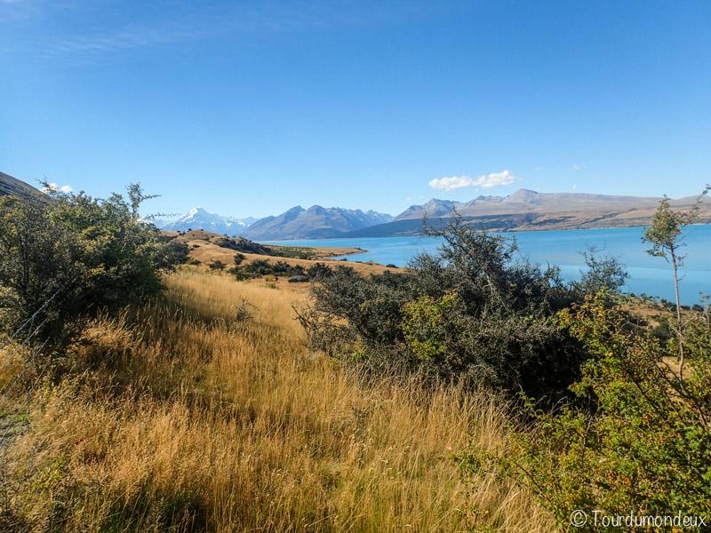 pukaki-vallée-nouvelle-zelande