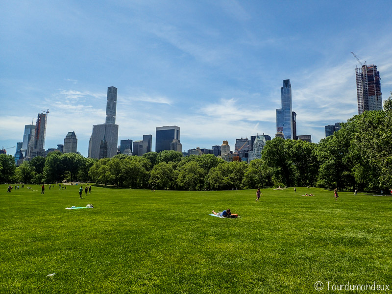 new-york-central-park-herbe-usa