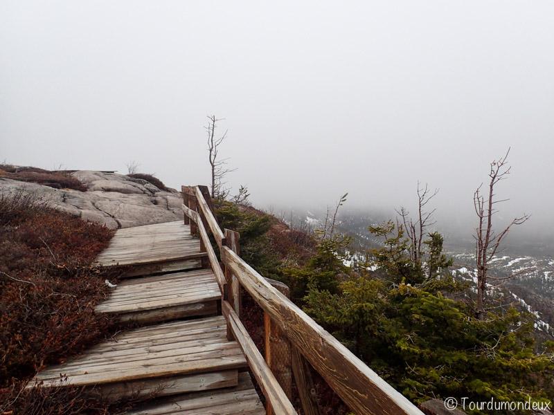 escalier-lac-des-cygnes-québec